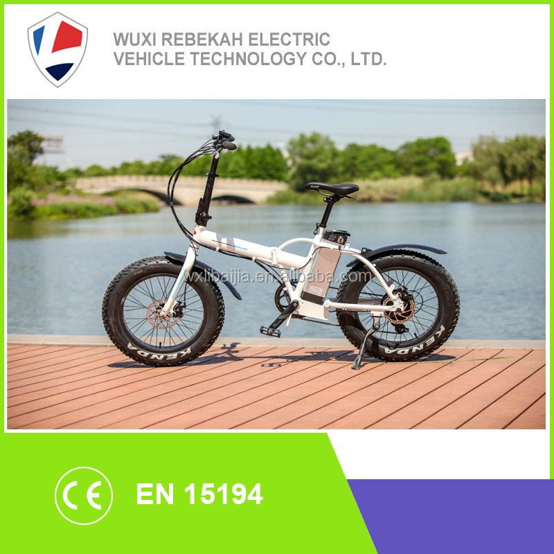 Folding electric Fat tyre bike