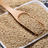 bulk GMP Best Quality Ethiopian Raw white Sesame Seed For Sale