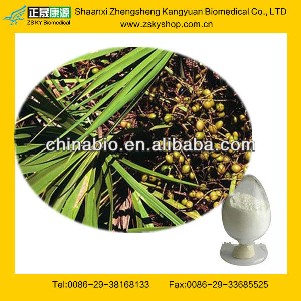 GMP Certified Factory Supply Saw Palmetto Fruit Extract