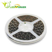 hot selling tira de led smd5050 60 SMD/M tape led strip lights with CE RoHS