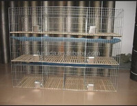 FRD- High quality wire mesh cage for rabbit,welded rabbit cage wire mesh.Rabbit cage