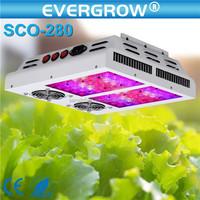 Professional Wholesale led grow light home depot Full Spectrum led grow light home depot
