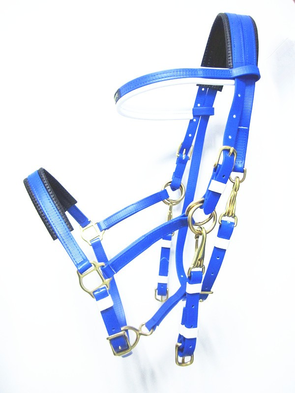 bridle and halter combine pvc endurance horse bridle