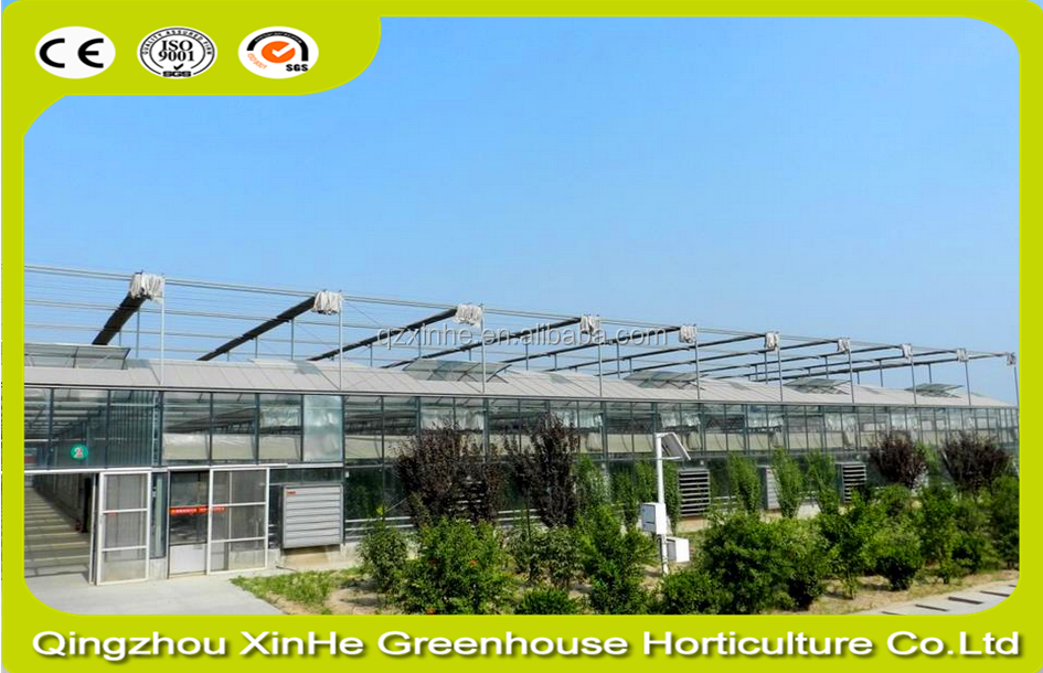 High quality sun shade greenhouse shade black shade net for covering modern green house