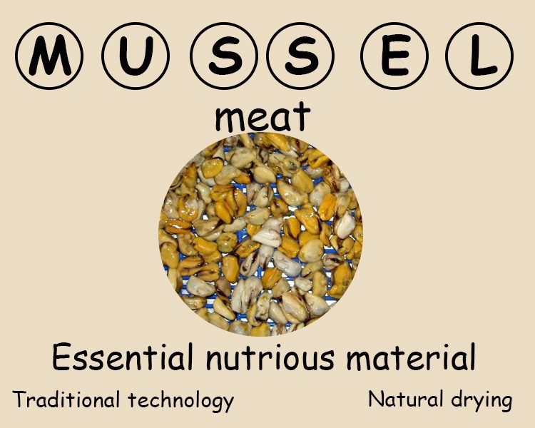 Frozen mussels meat iqf with 1Kg/Bag or 10Kg/CTN Bulk Package detail