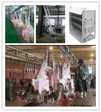 Complete halal meat slaughterhouse for ram