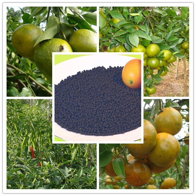 Organic fertilizer for accelerating plant root development and promoting fruit nutrition