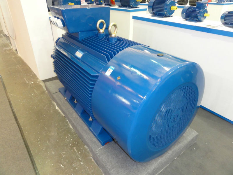 Cast Iron Three Phase Electric Motor with EFF1 EFF2