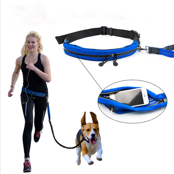 New Design Founctional Hands Free Dog Running Leash With Bag