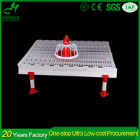 PVC beams and Supporting leg plastic floor for poultry farming equipment