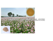 Natural Plant Buckwheat extract/Wild buckwheat rhizome extract/Tartary buckwheat extract Supplied by ISO Manufacturer