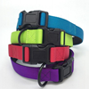 Pet dog collar for dogs and cats neoprene