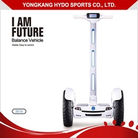 Factory Supply 2 Wheel Electric Self Balance Scooter Electric Chariot Personal
