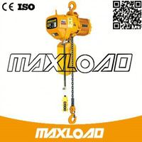 Europe Type Black Bear 500Kg Electric Chain Hoist To South Africa Bearing