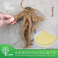 100% Natural chinese angelica extract/Dong Quai straight powder