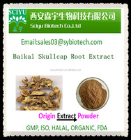 High Quality Scutellaria Root Extract 85% Baicalin
