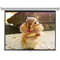 Fabric Folding matte white pull-down Projection Screen