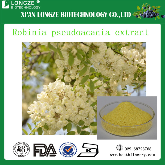 100% Natural Sophora flower bud extract 5:1.10:1 /Robinia pseudoacacia L.extract powder with Robinin 95%