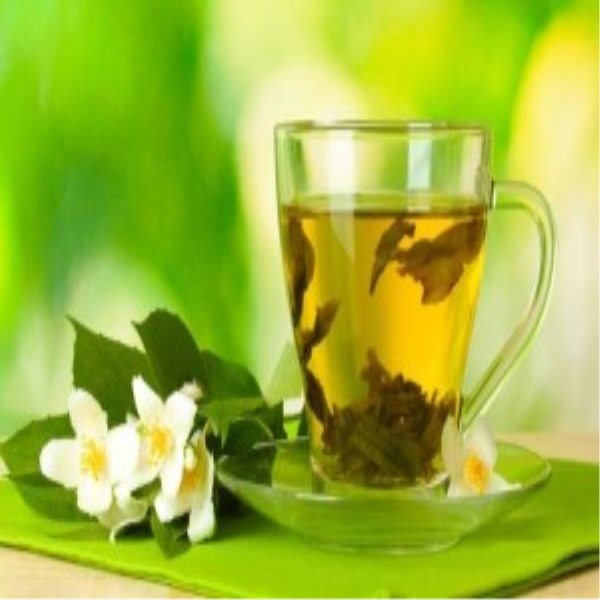 Green Tea Extrac Polyphenols L-Theanine and EGCG
