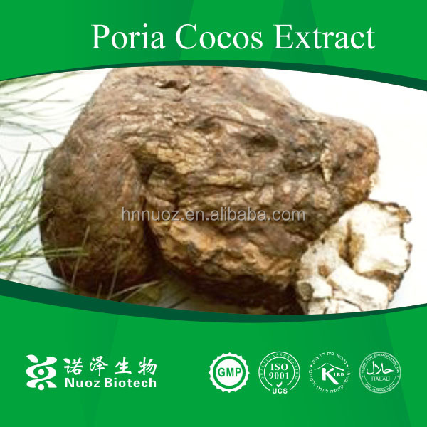 100% Natural High Quality Poria Cocos Extract 5%Poria cocos Polysaccharide extract powder/Traditional Chinese Medicine Poris coc