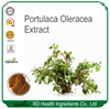 Professional Manufacturer Supplier Natural portulaca oleracea extract, Portusana purslane extract
