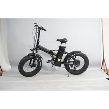 2017 High Quality 2 Seat Fat Tire Electric Bike for Adults