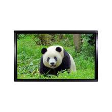 55 Inch Wireless LCD Advertising Display Screen