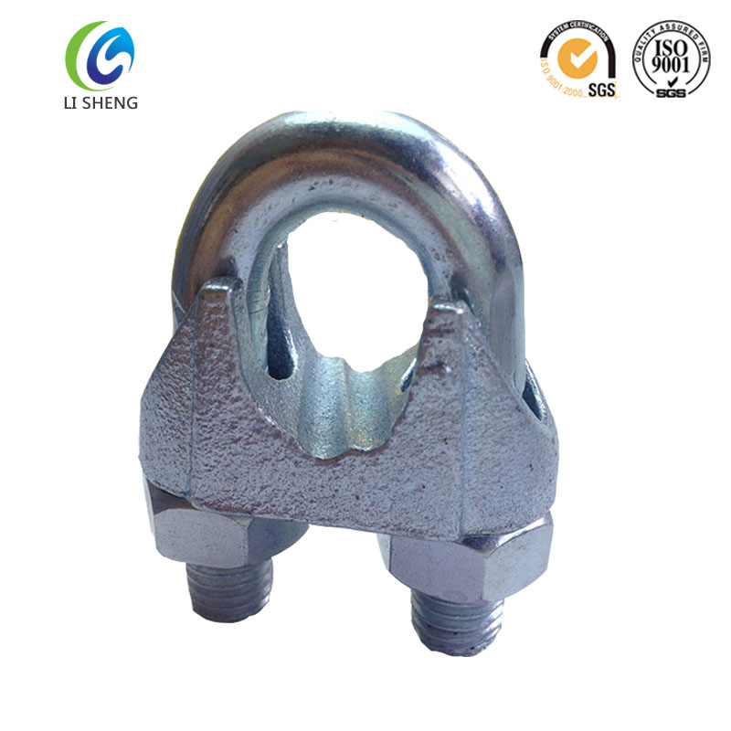 Electric Galvanized Din741 Wire Rope Fasteners