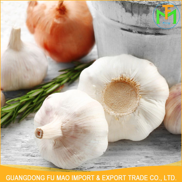 2016 Best Quality All The Year Round Supplier New Crop Fresh Organic Natural Purple Garlic