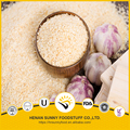 Professional producer in China's market for air dried garlic granules