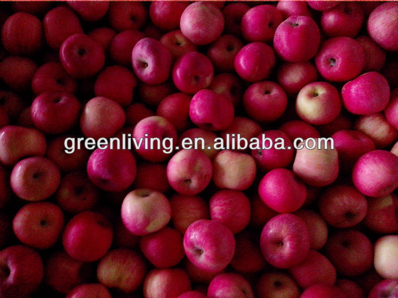 red colour delicious taste top quality apple from china