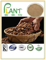 Best Quality pure natural Roasted Cocoa Beans powder for Sale