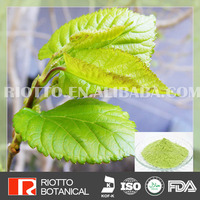 High quality cheap mulberry leaf extract