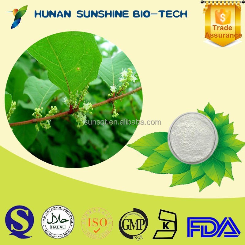 white powder Chlorogenic acid 98% Eucommia ulmoides P.E.drugs for anticancer