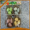 Home decoration pieces EGGS