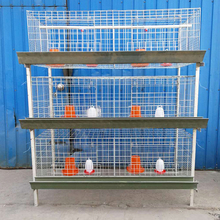 design broiler chicken transport breeding cages