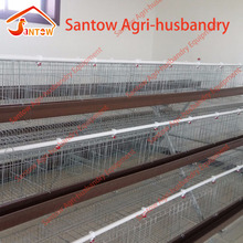Egg layer design poultry farming laying cages / automatic poultry layer cages systems