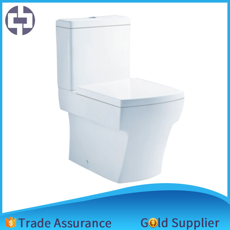 very dense skin auto washing toilet with excellent quality