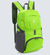 Sports Polyester Foldable Cheap Waterproof Backpack(FOL17-009)