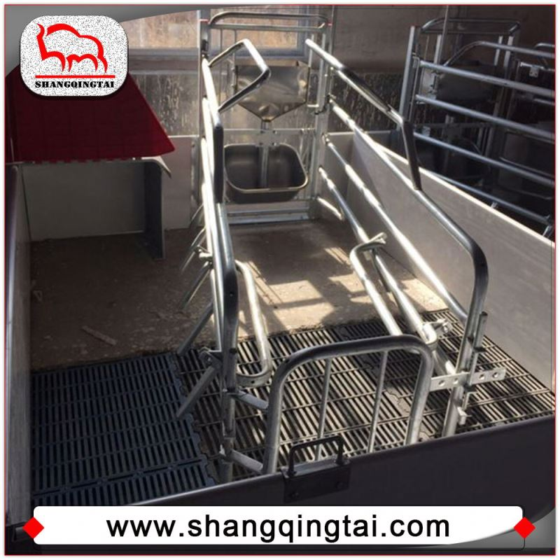 Animal Equipment Farrowing Stall Famous Piggery Gestation Stall