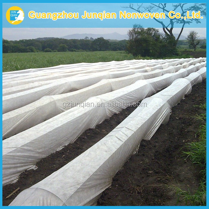 Uv Treated Agricultural Film Protect Vegetables From Frost High Quanlity Plants And Vegetable Cover Bio Tomato Fleece Hoods