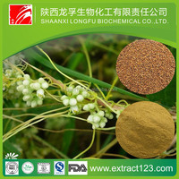 Manufacturer sales dodder seed extract
