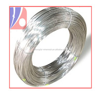 Electro/Hot Dipped Galvanized Steel Wire Factory 1.0mm