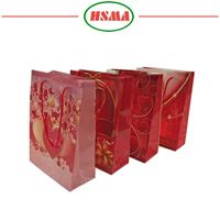 Super quality ribbon tie gift bags pp woven gift bag for girls
