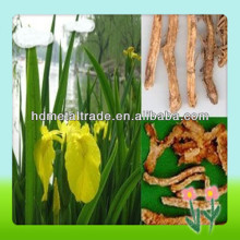 anemarrhena root extract powder