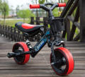 BALANCE CAR 2017 NEW DESIGN BABY TRIKE CAN BE CHANGED INTO BICYCLE AND TRICYCLE