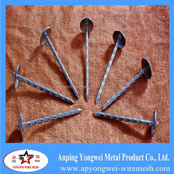 ISO 9001 Electro Galvanized Mushroom&umbrella head roofing nails BWG8-BWG13(Direct From Factory)
