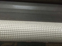 Hot sale alkali resistant fiberglass mesh with 160g/sqm