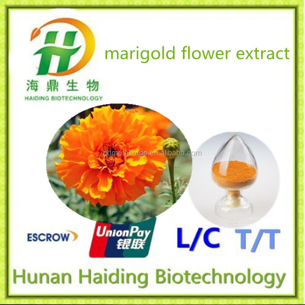 100% Natural Extraction Of Marigold Oleoresin