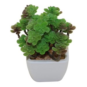 Cheap wholesale artificial flowers plastic succulent plant